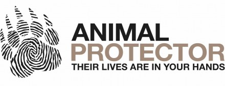 the work of organizations protecting animal rights Animal rights organizations animal rights art and culture: art, video, music, acting, animation  animal protection institute animal rights conference 2001.